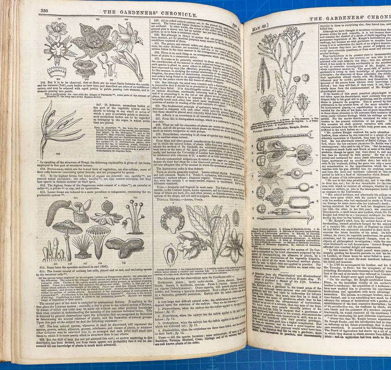 [Botany, Fox Talbot Calotype, Shakespeare Society] The Gardeners' Chronicle : A Stamped Newspaper of Rural Economy and General News. Nos. 1-26 January 2, 1841 - June 26, 1841. John Lindley.